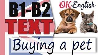 Buying a Pet - Покупка домашнего питомца 📘 Intermediate English text | Английский язык OK English