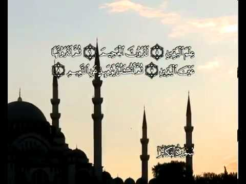 Сура Страсть к преумножению <br>(ат-Такасур) - шейх / Мухаммад Айюб -