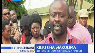 Wakulima wa mahindi katika ukanda wa North Rift walalamika kuhusu bei duni ya mbegu za mahindi