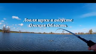 Ловля щуки в омской области 2020 на озере изюк
