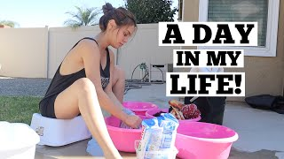 A DAY IN MY LIFE   IVANA ALAWI