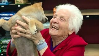 GRANDMAS FIRST TRIP TO THE PET STORE | Ross Smith