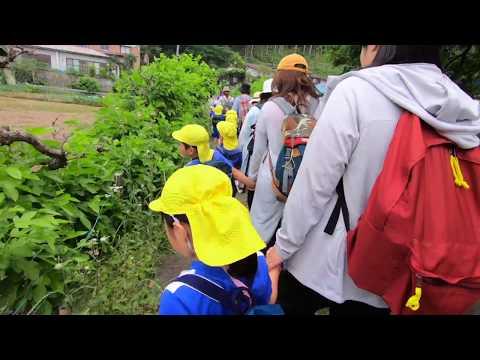 Chichibu Nursery School