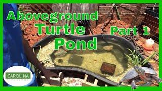 ABOVEGROUND Outdoor TURTLE Pond! (Part 1)