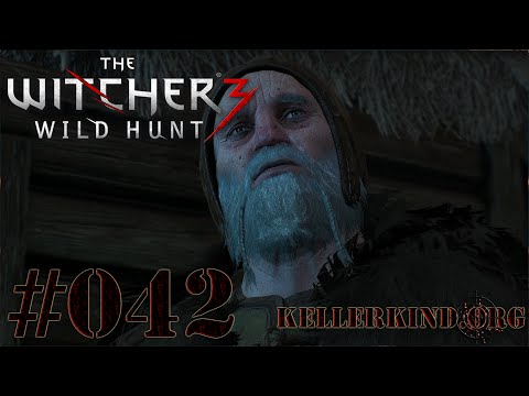 The Witcher 3 [HD|60FPS] #042 Fechtstunde und Weissagungen ★ Let's Play The Witcher 3