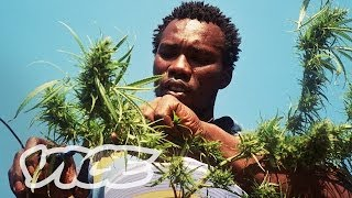Swaziland: Gold Mine Of Marijuana (Part 22)