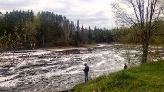 Watching the River Flow - a (Birthday - at 72) dedication to Bob Dylan
