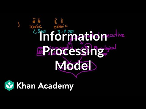 261cd33a2 Information processing model: Sensory, working, and long term memory  (video) | Khan Academy