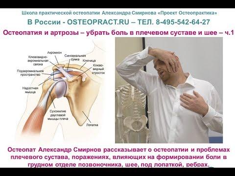 Болит грудной отдел позвоночника что принять