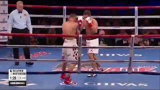 Головкин - Мартиросян / Golovkin - Martirosyan нокаут во 2 раунде