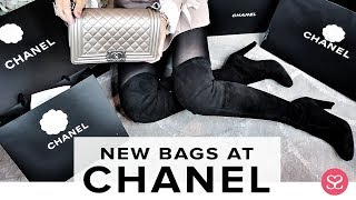 Gambar cover MY NEW CHANEL & *ALL* THE NEW BAGS FOR THIS SEASON! | Sophie Shohet | Luxe Haul