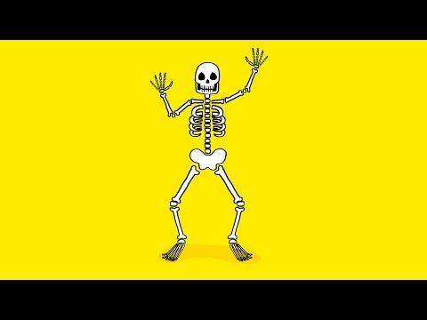 Déguisement Kolalapo Squelette XL
