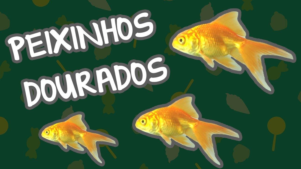 PEIXINHOS DOURADOS | BEBÊ MAIS CORES