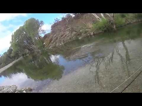 Fly Fishing lowland brownies