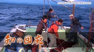 知の回廊 第103回「由比の桜えび漁にみる6次産業化の未来」