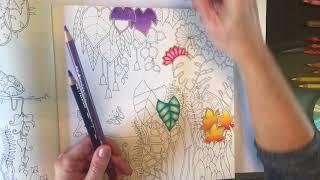 Tutoria 1 Johanna Basford Magical Jungle