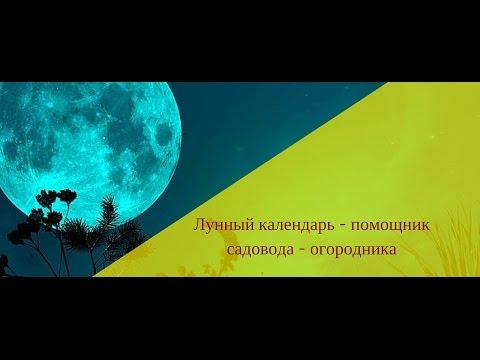 Андрей дондуков астролог