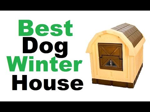 Dog Winter House- Best Winter Dog House 2018 ||