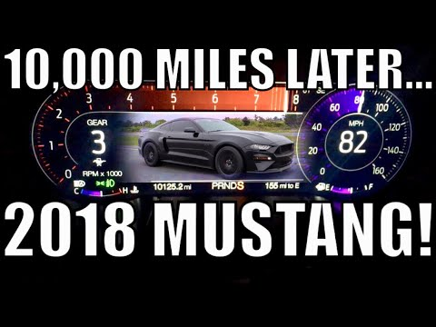 TRANSMISSION ISSUES In The NEW 2018 MUSTANG GT Plus 10k Miles Update!!!
