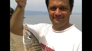 Рыбалка с берега в греция халкидики