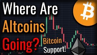 Are Altcoins Primed For A New Rally? Bitcoin Gets Support!