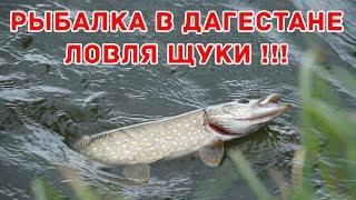 Самые рыболовные места в дагестане