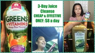 3 Day Juice Cleanse | SUPER CHEAP & EFFECTIVE | ONLY $8 a day!
