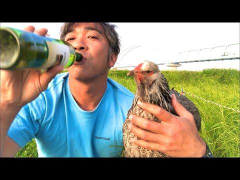 , title : '【にわとり散歩】さみしいオヤジが鶏と河川敷でワイン飲みながらひとりごと