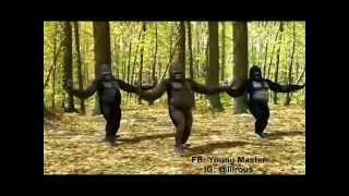 DAVIDO SKELEWU GORILLA DANCE REMAKE
