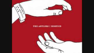 The Antlers Bear
