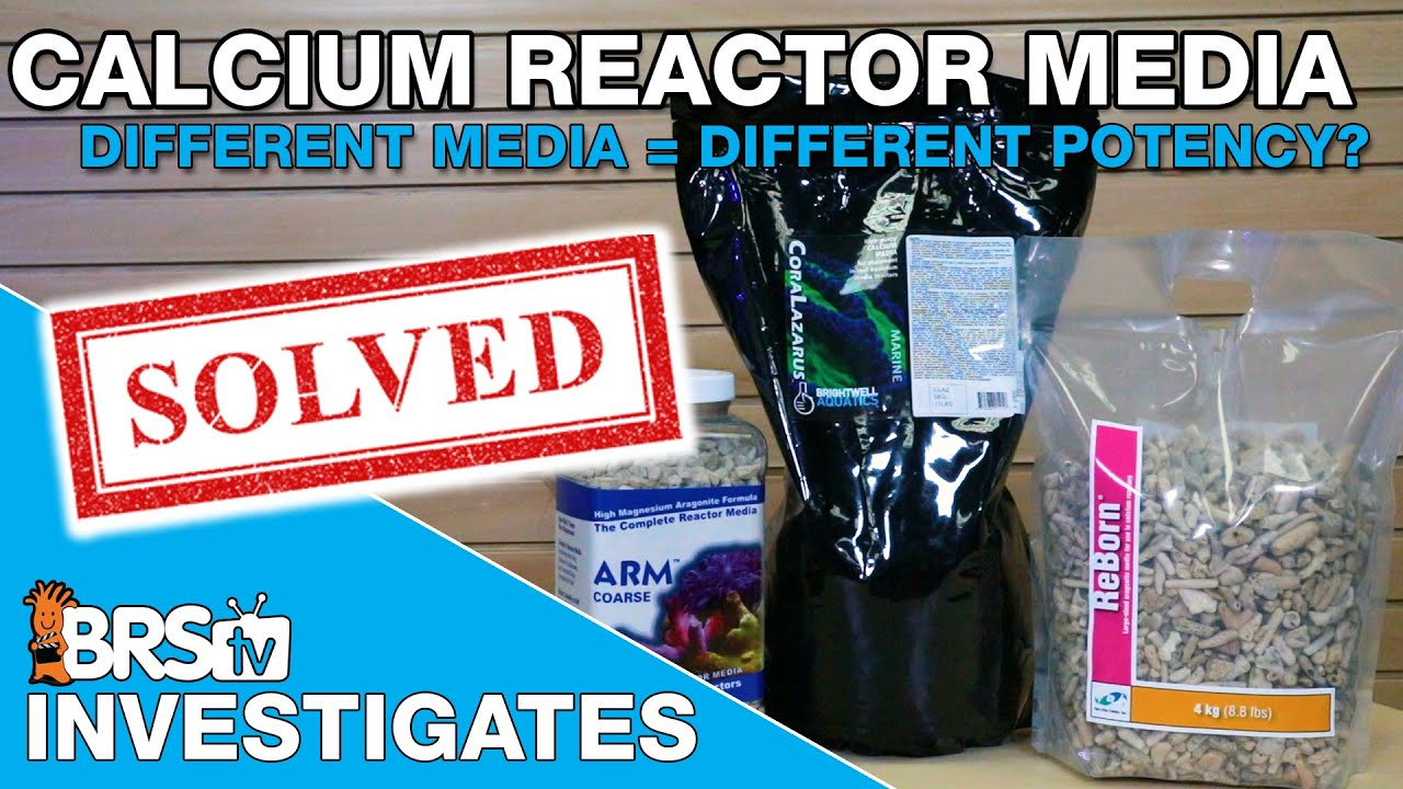 Are some calcium reactor media types more potent than others? - BRStv Investigates
