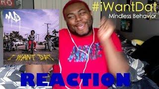 Mindless Behavior - #iWantDat ft. Problem, Bad Lucc | REACTION