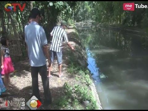 Warga Jombang Gempar Saat Melihat Buaya Berada di Tepi Sungai Dekat Perkampungan - BIP 25/12