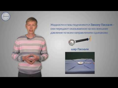 Передача давления жидкостями. Закон Паскаля. Давление на глубине жидкости