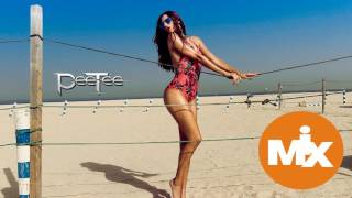 New Electro House Music Summer Mix 2016 (PeeTee)