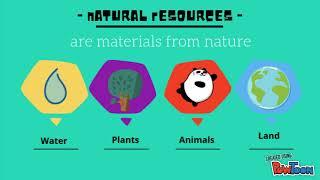 3 types of economic resources
