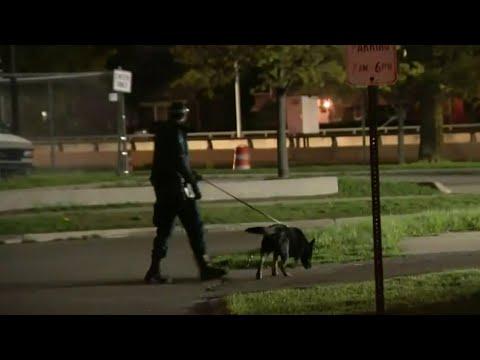 Detroit police shoot, kill man who drove through crime scene