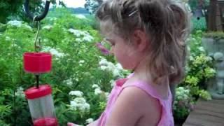 Sugarwings and the Sugarwater