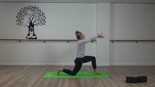 Vinyasa Yoga #4 With Olivia
