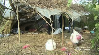 У Бердичеві поліцейські викрили польову «комору» з майже півтонною сухих конопель
