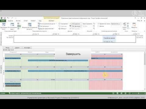 Управление проектами в Microsoft Project Professional 2010/2013