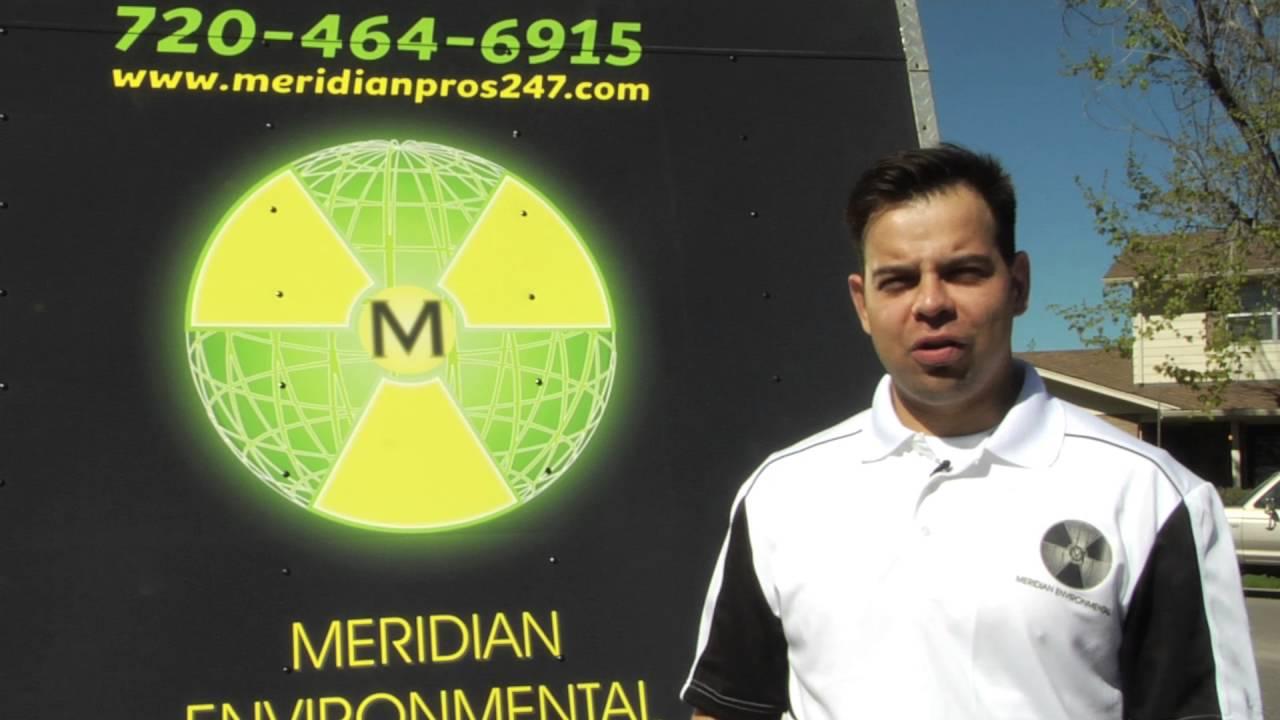 Meridian Environmental