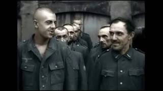 German Surrenders  Prisoners During The Warsaw Uprising In Poland   1944