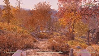 FALLOUT 76 MAX SETTINGS REVIEW