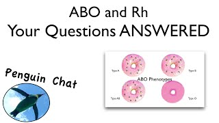 Blood Typing Questions:  PenguinChat