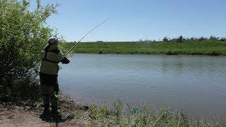 Нашто ловить леща в августе на реке