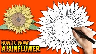 How to draw a Sunflower - Easy step-by-step drawing lessons for kids