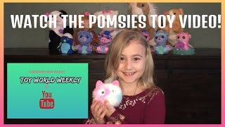 POMSIE TOY VIDEO REVIEW- TOY WORLD WEEKLY!