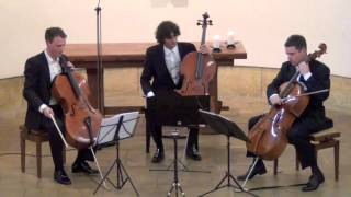 Haydn Divertimento D Major on 3 Celli live in concert