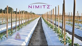 NIMITZ. Rate Calculation Information